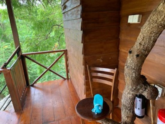 Front Patio of Treehouse