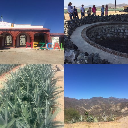 Santiago Matatlan, Mexico: Do you want to learn more about mezcal?, right at the source. You've got one or two days