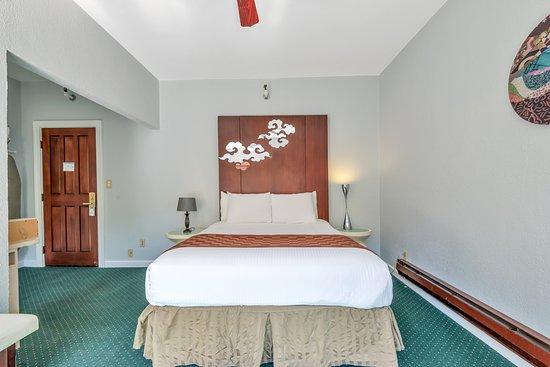 Large Single Queen Room