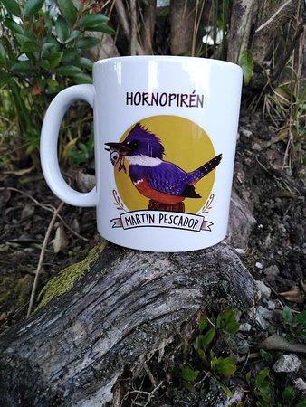 Hornopiren, Chili: tazón Martín Pescador