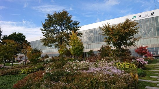 Asahikawa Kitasaito Garden Resmi