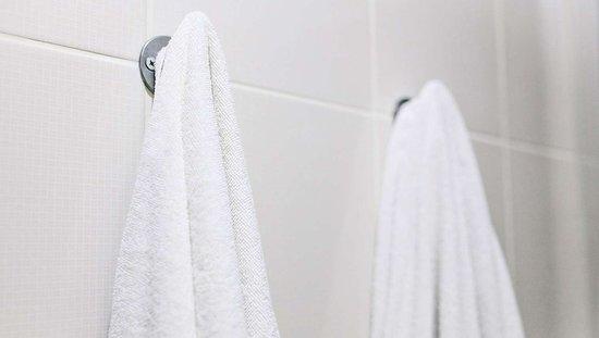 MH WildWoodInn Crawfordville FL Guestroom Bathroom
