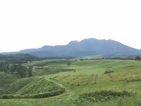 Doshinkaiki Farm