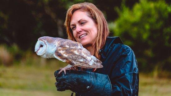 O Reillys Birds Of Prey Picture Of O Reillys Birds Of Prey Lamington National Park Tripadvisor