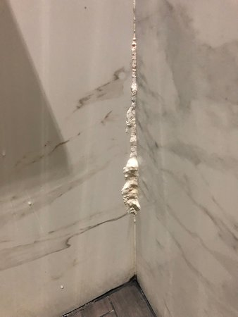Shower features white growth.