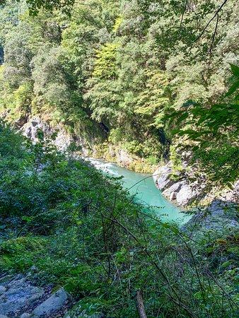 鳩ノ巣渓谷:遊歩道から多摩川