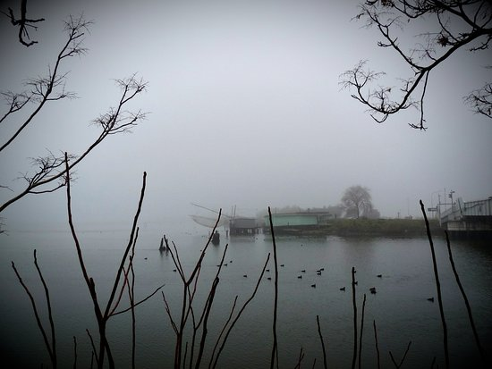 Capanni da pesca nella nebbia di Comacchio