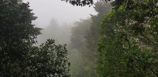 Bilde fra Kolagappara