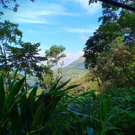 Munnar Lovers paradise