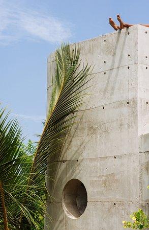 Tropical modernism - Mond