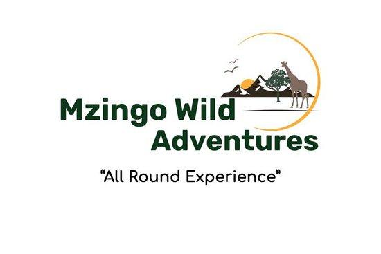 Mzingo Wild Adventures
