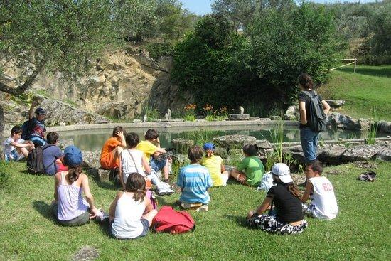 Castiglione del Lago Photo