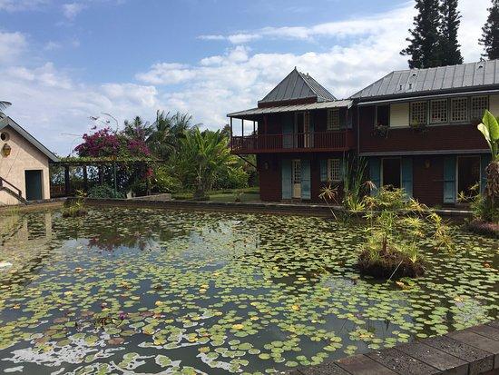 Mascarin Botanical Garden
