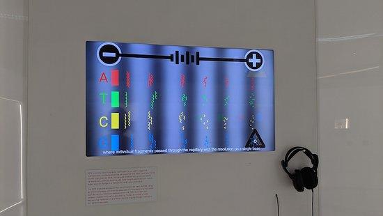Age of Genes exhibition