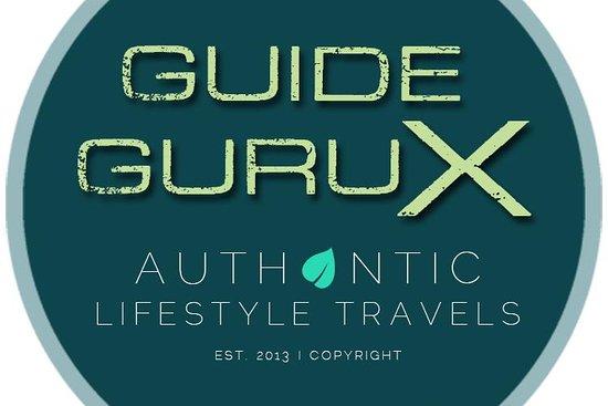 Guide GURU X