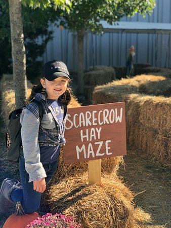 Liberty Science Center Fall Fest Hay Maze