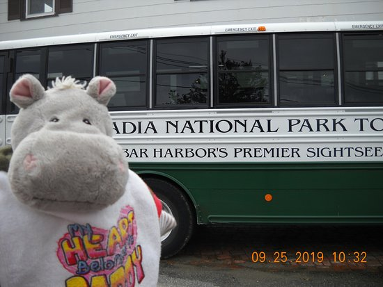 Narrated Bus Tour of Bar Harbor and Acadia National Park (Classic - 2.5 Hours): Pat and the bus!