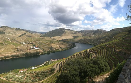 View of the Douro river valley from the Quinta das Carvalhas hillside