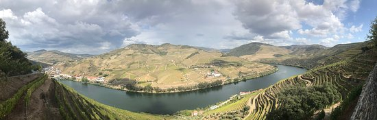 Panoramic View of the Douro river valley from the Quinta das Carvalhas hillside