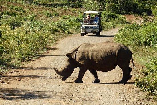 Safari privé de 2jours en petit...
