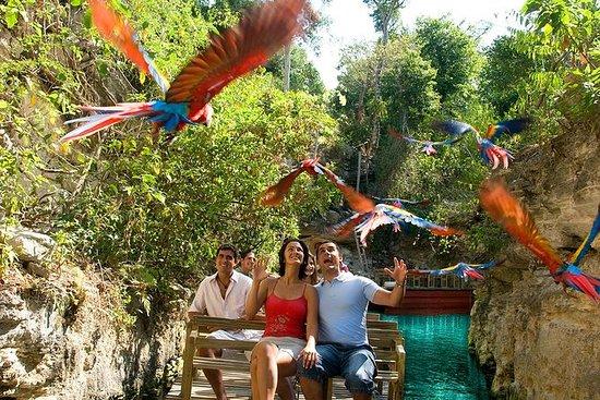 Excursion d'une journée à Xcaret au départ de PlayadelCarmen : Xcaret Day Trip from Playa del Carmen
