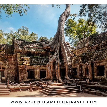 Ta Prohm(Khmer:ប្រាសាទតាព្រហ្ម, pronunciation: prasat taprohm) is the modern name of the temple atAngkor,Siem Reap Province,Cambodia, built in theBayonstyle largely in the late 12th and early 13th centuries and originally calledRajavihara(inKhmer: រាជវិហារ).