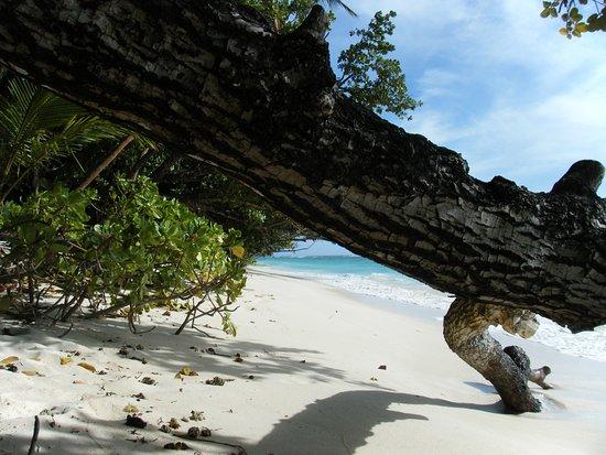 جزيرة سيلهويت, سيشيل: Silhouette Island Îles Seychelles