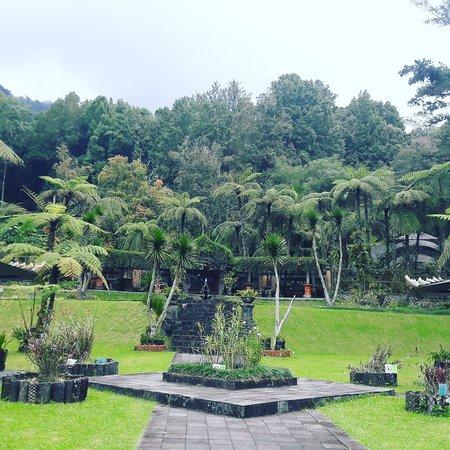 Candikuning, Indonesië: Botanical garden.