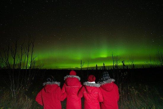 Excursión para ver aurora boreal en...
