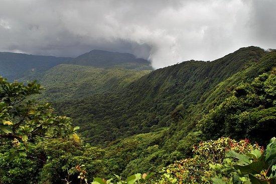 Santa Elena Cloud Forest Reserve...