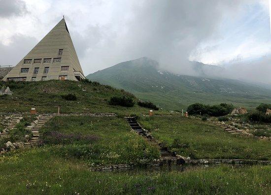 Jardin Alpin du Col du Mont Cenis