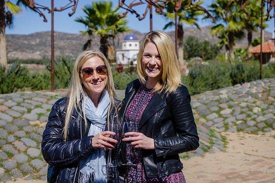 Valle De Guadalupe Premium Wine and...