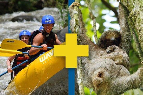 Sloth Sanctuary + Rafting class II & III Combo