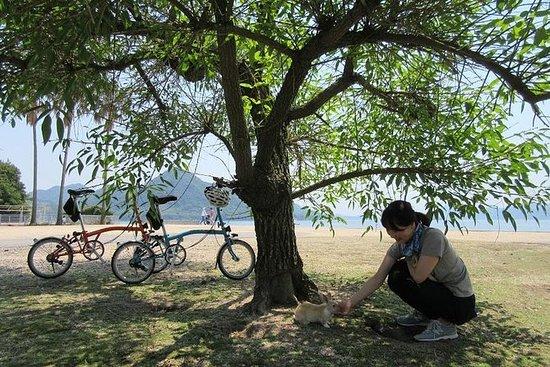 奥之岛和近江自行车