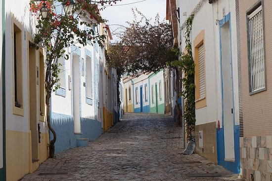 Algarve landskap og vingård