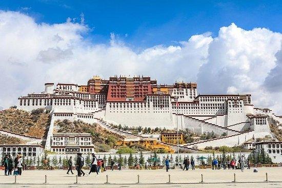 11 dager Beijing-Lhasa-Xian-Shanghai...