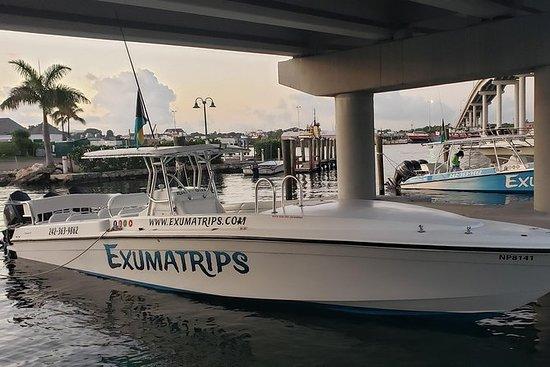 "40 ""privat charterbåt halvdagstur i..."
