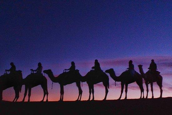 3-days desert tour to Marzouga