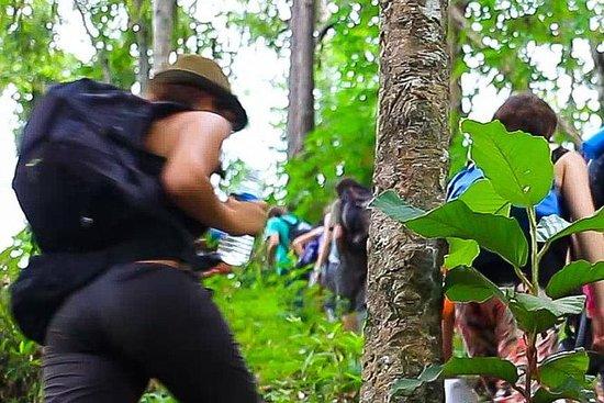 3D2N Mae Wang Jungle Trekking...