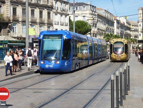 A 50m d'une station de tramway.