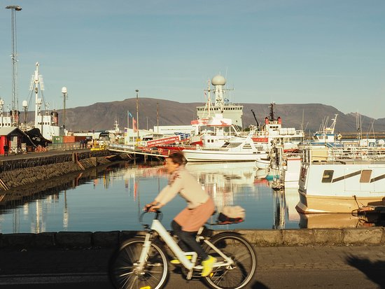 Reykjavik Food Walk: View from our restaurant
