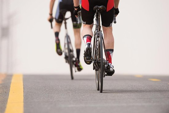 Al Wathba Cycle Track Bike Rental - Front Line Sports