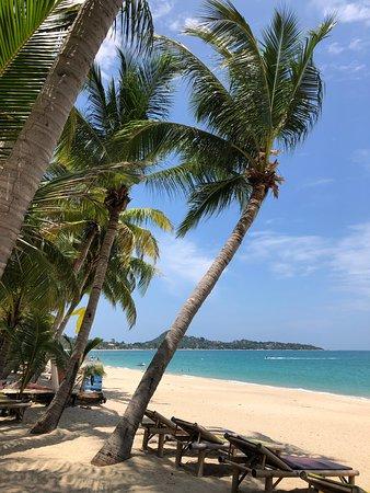 Ko Samui, Thajsko: Пляж