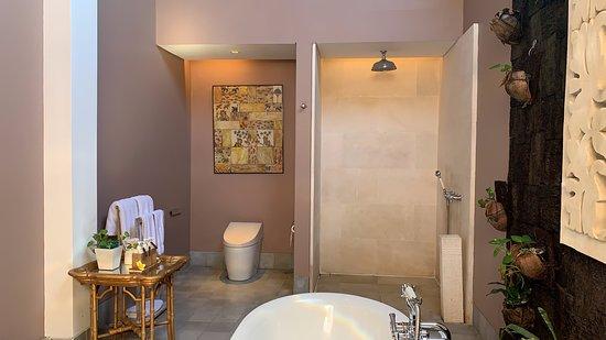 Toilet, Shower and Bath Tub