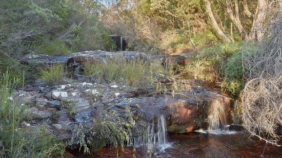 Stunning waterfall on Pittwater paddle and walk