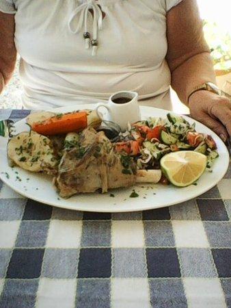 Stone Lion Tavern: Lamb shank with sald, potatoe, onion, carrot, mint sauce and gravy.