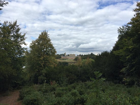 Cliveden woodlands splendour