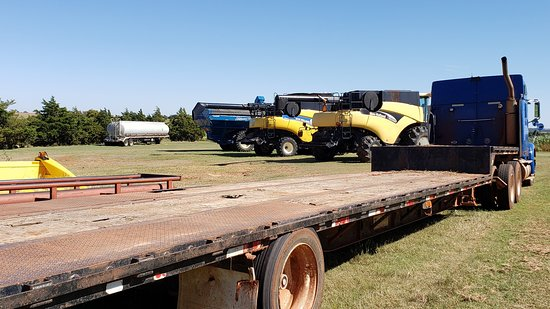 Enid, OK: You could climb on these trucks if you wanted to.