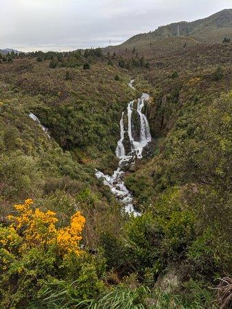 Bilde fra Waikato Region