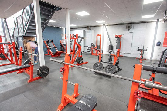 Huge selection of free weights